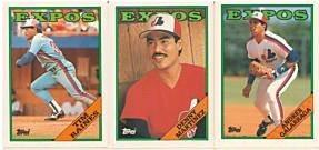 1988 Topps Montreal Expos baseball card team set (Andres Galarraga Tim Raines)