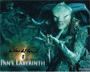 Guillermo Del Toro autographed Pan's Labyrinth 8x10 photo
