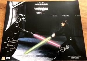 Mark Hamill & Dave Prowse autographed Star Wars Return of the Jedi 16x20 Luke Skywalker vs Darth Vader poster