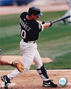 Magglio Ordonez Chicago White Sox 8x10 photo