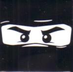 LEGO Ninjago 2011 Comic-Con promo button or pin