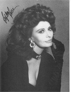 Sophia Loren autographed 7x9 black & white portrait photo