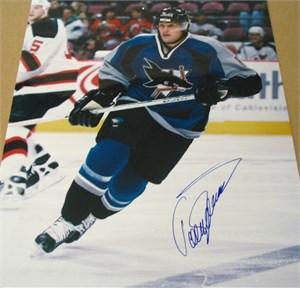 Teemu Selanne autographed San Jose Sharks 16x20 poster size photo
