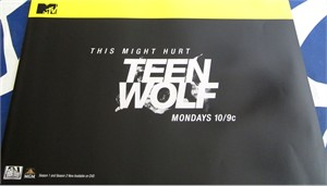 Teen Wolf 2013 Comic-Con 13x20 inch mini MTV promo poster MINT