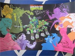 Teenage Mutant Ninja Turtles cast autographed 2017 Comic-Con poster (Greg Cipes Rob Paulsen)