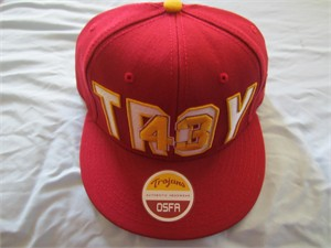 Troy Polamalu USC Trojans embroidered cap or hat NEW