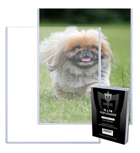11x14 inch photo topload plastic display holder