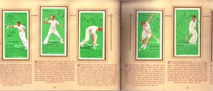 1936 Player & Sons 50 card tennis set in album (Don Budge Helen Jacobs Fred Perry)
