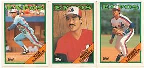 1988 Topps Montreal Expos baseball card team set (Andres Galarraga Tim Raines)