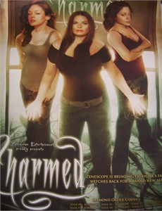 Charmed 2010 17x22 inch promo poster Rose McGowan Alyssa Milano MINT