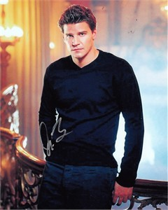 David Boreanaz autographed 8x10 portrait photo