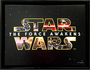 John Boyega & Oscar Isaac autographed Star Wars The Force Awakens movie logo 14x18 inch canvas framed