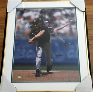 Randy Johnson autographed Arizona Diamondbacks 16x20 poster size photo matted & framed UDA #51/200